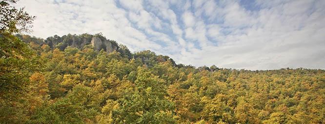 foresta-piramide-di-bomarzo