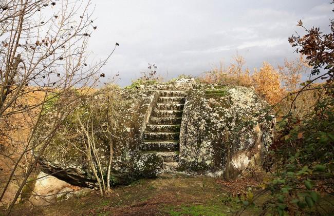 Selva di Malano