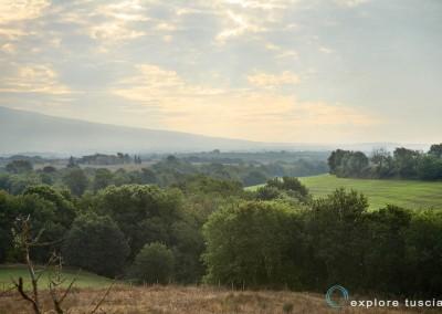 paesaggi-della-tuscia-4260