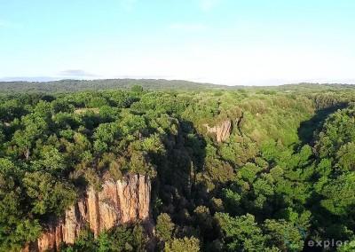 marturanum-forest