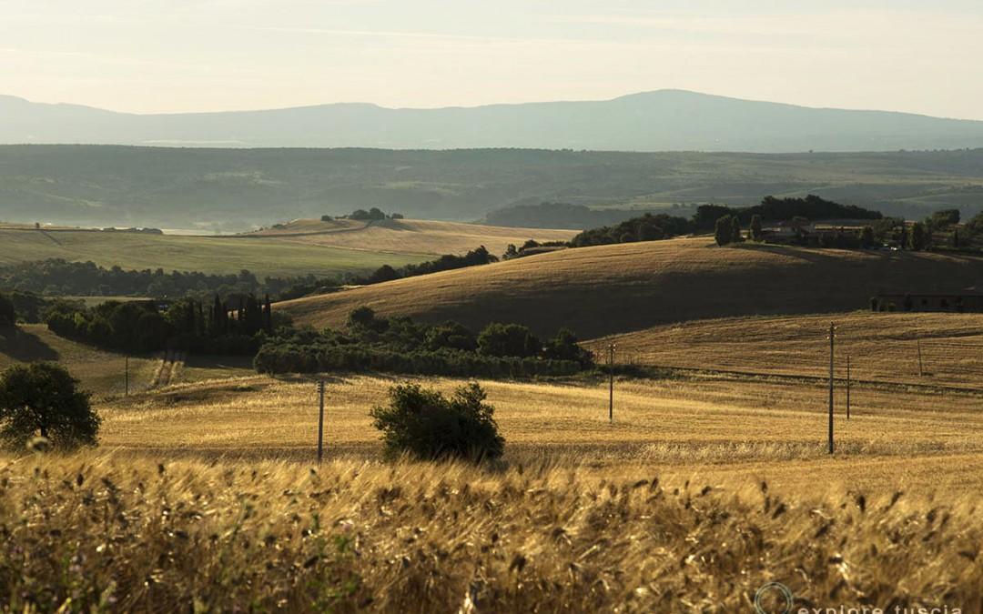 SS675 nella Valle del Mignone – vinceranno politiche retrograde e interessi privati?