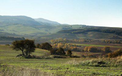 La valle del Mignone – Rara Bellezza IV