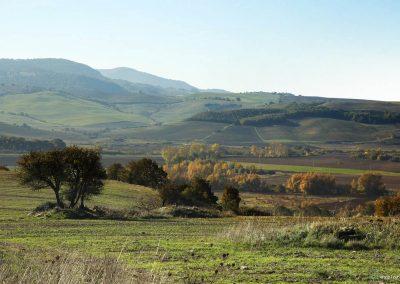 valle-del-mignone-159-cr12b