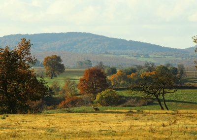 paesaggi-rurali-258