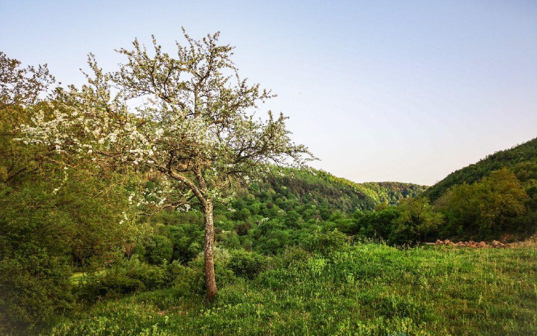 Valle del Mignone – Valle Magica
