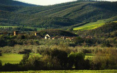 Civitella Cesi – Immersione Tolfa