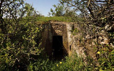 Necropoli del Ferrone – Tomba