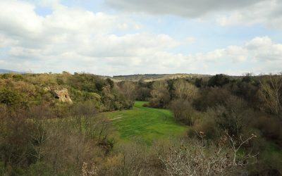 Il Fosso Grignano un Panorama Etrusco
