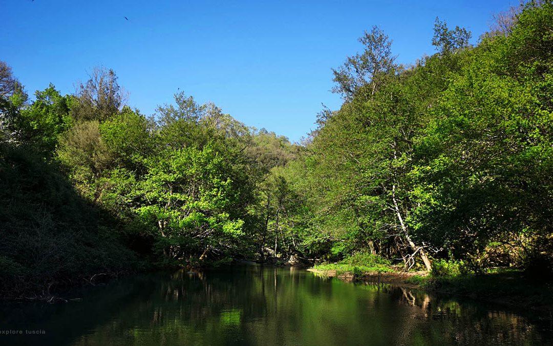 Il Fiume Mignone – Un Percorso Indimenticabile per i Paesaggi Antichi del Lazio