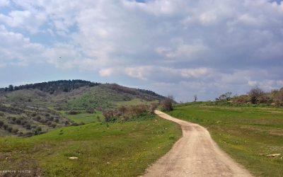 Verde Colline di Monte Romano