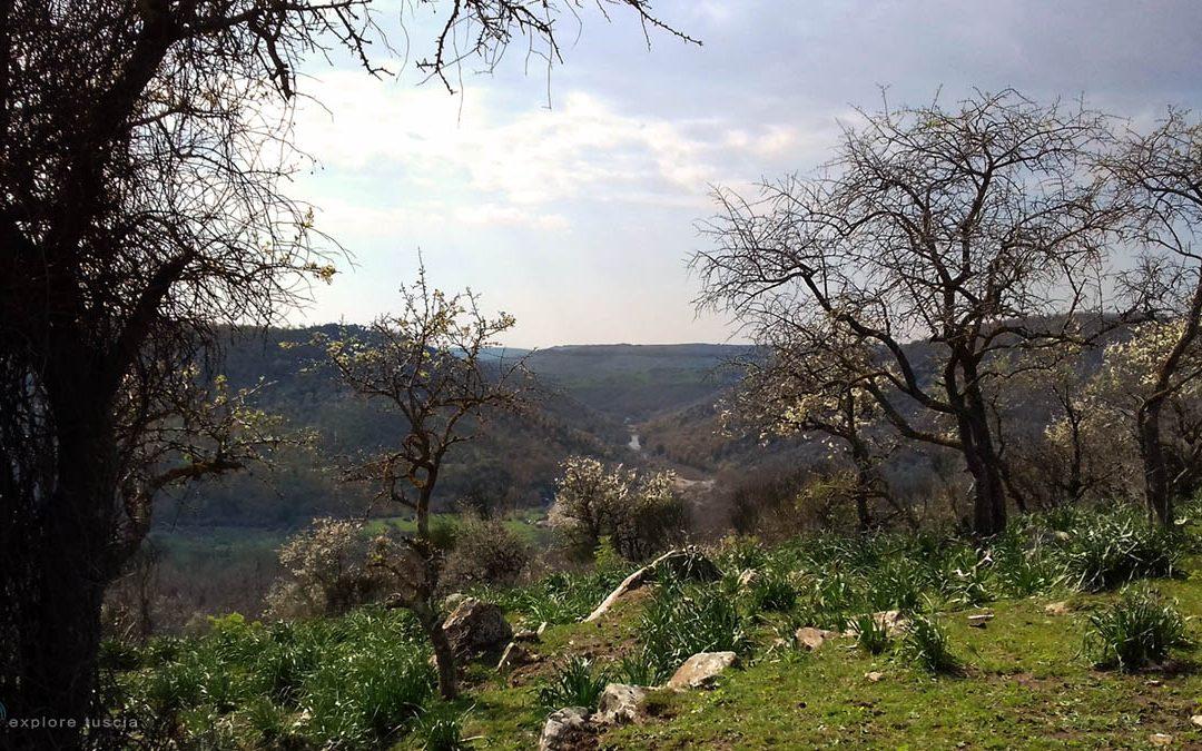 La valle del Mignone – tratto Monte Romano