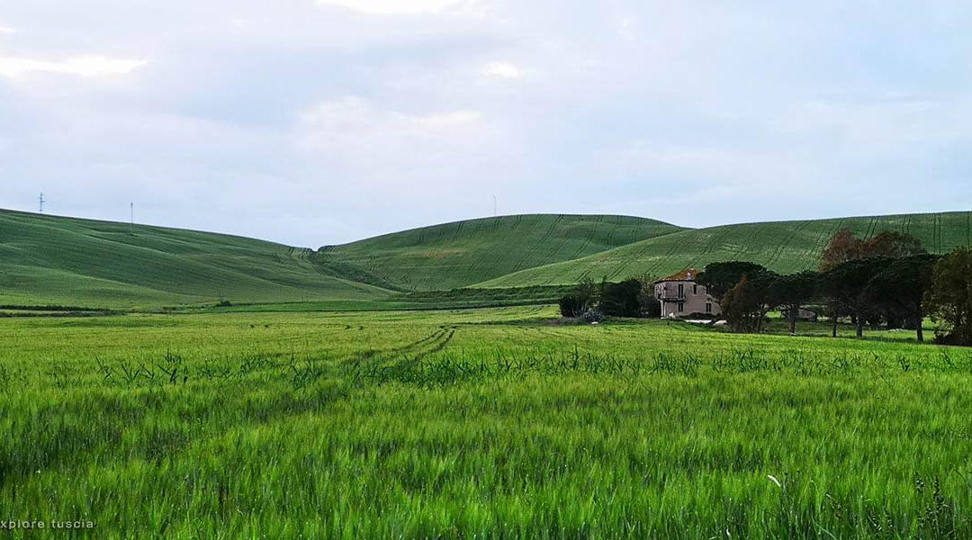 La Valle del Mignone – Viaggio