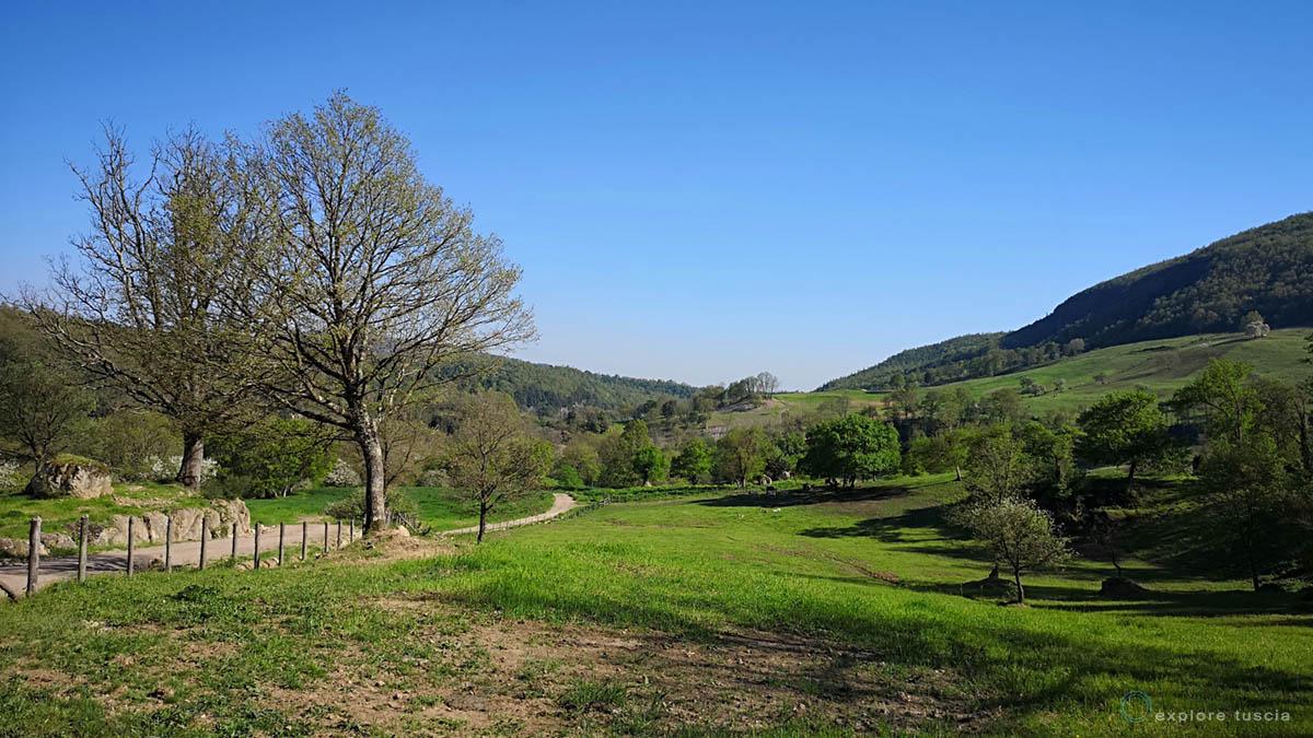 valle del Mignone - nuova