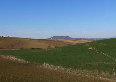 Formicone Monte Canino e Amiata