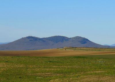 Monte Canino