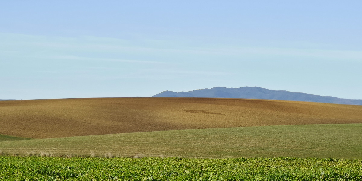Formicone verso Toscana