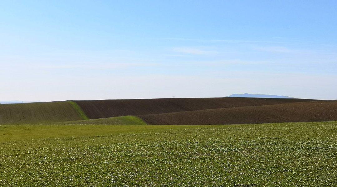 Che Bella! Il Formicone – Tuscania