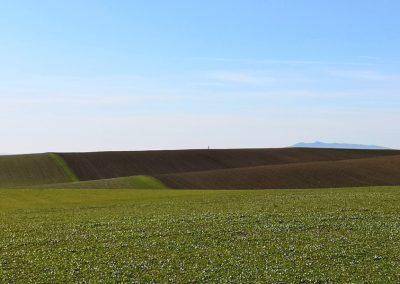 Terre Agricole, Il Formicone - Tuscania