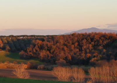 Monte Cimino da San Giuliano - Pian di Vico