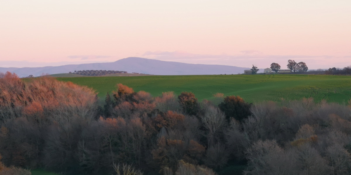 Monte Fogliano da San Giuliano - Pian di Vico