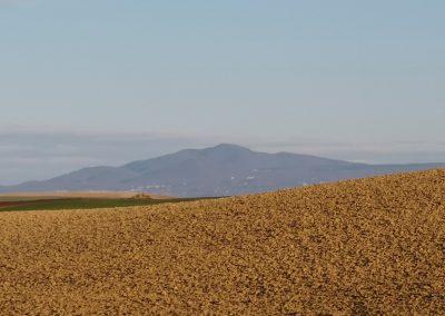 Monte Cimino dal Formicone