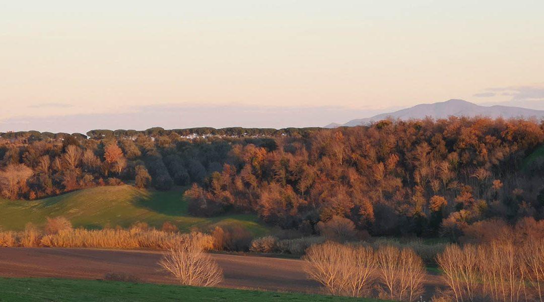 Pian di Vico – 250 ha di fotovoltaico a terra