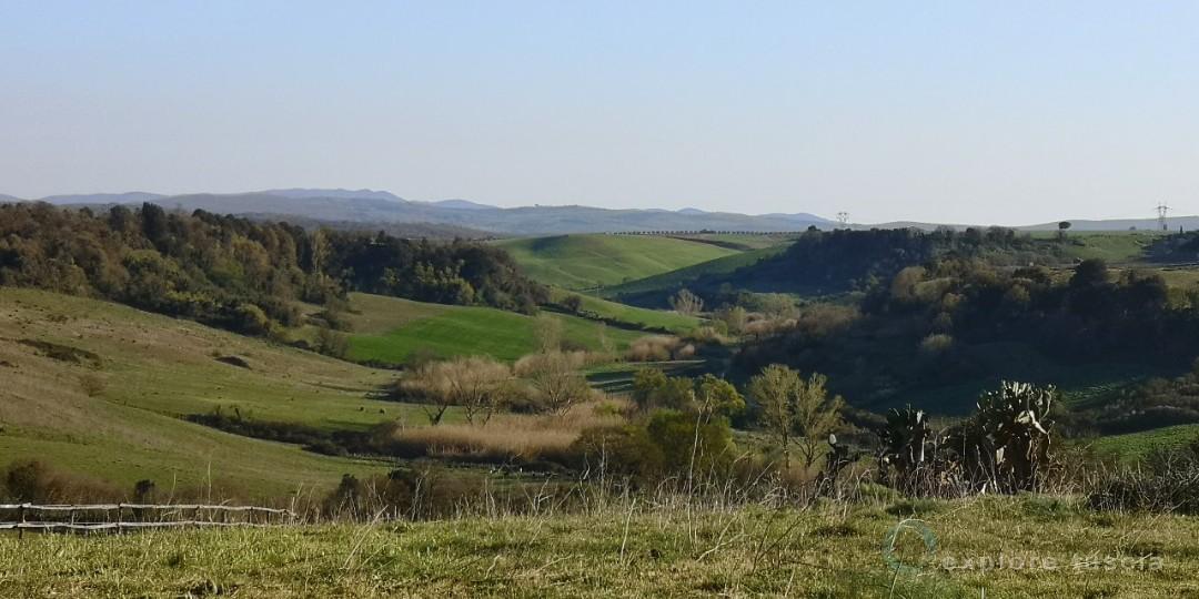 Valle-del-marta