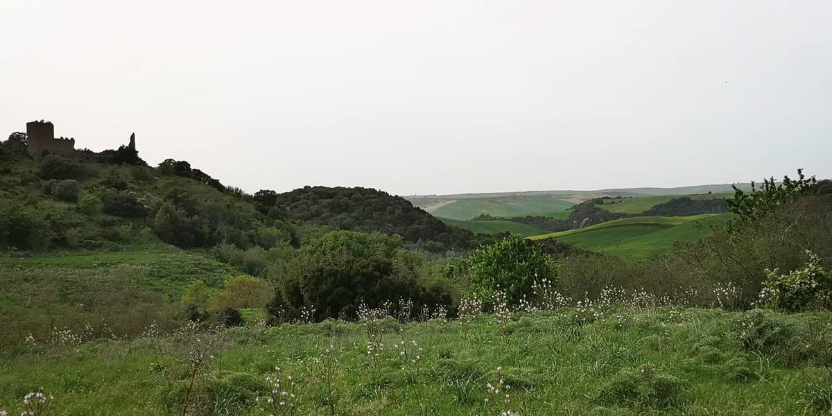 cencelle-valle-del-mignone