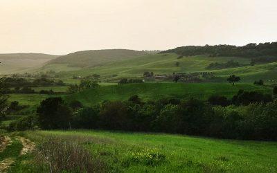 Valle del Mignone – Superstrada in Mezzo 5.0