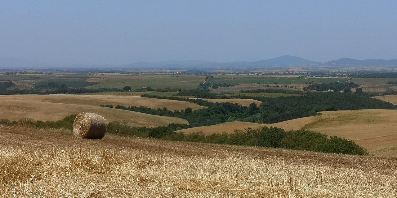 Tuscania,-formicone-macroaria-rinnovabili