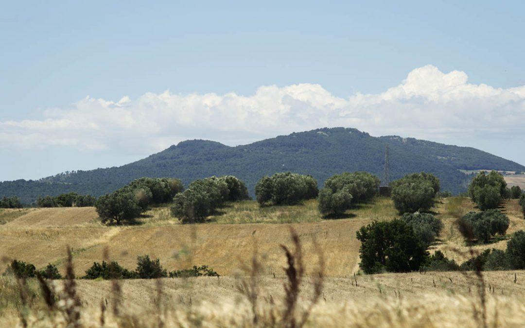 Il Dop Canino del Comune di Tuscania si trova all' interno della macroarea destinata alle rinnovabili… Ooooops!?