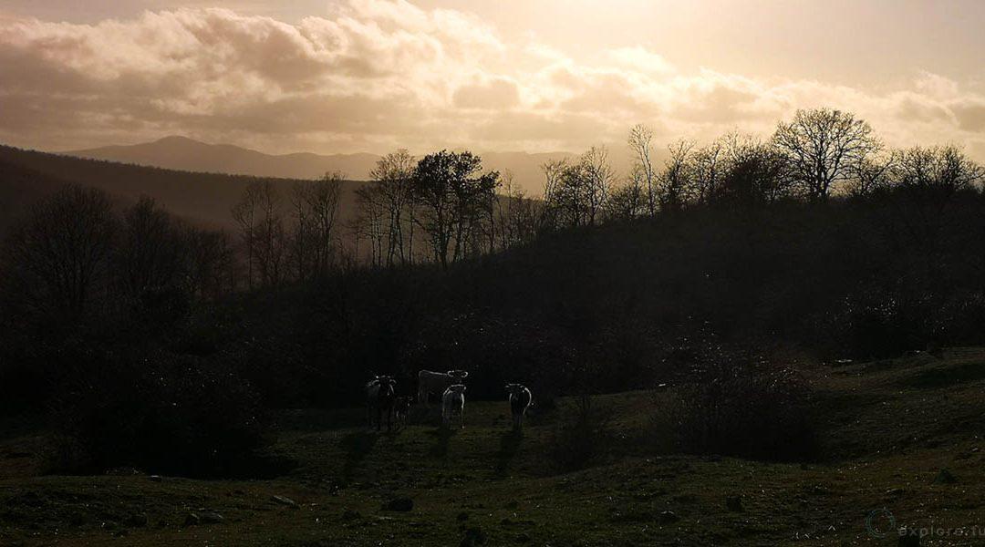 Tolfa e i Paesaggi Incantati