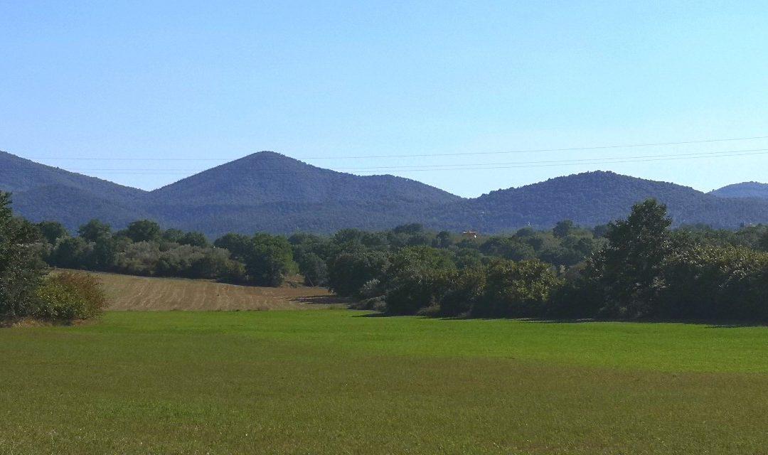 Monti Cimini – Allegro
