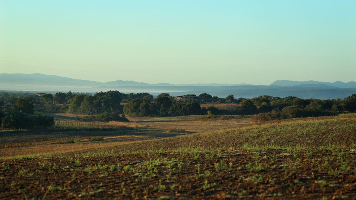 Intorno-al-Marta-tuscania-nord-112
