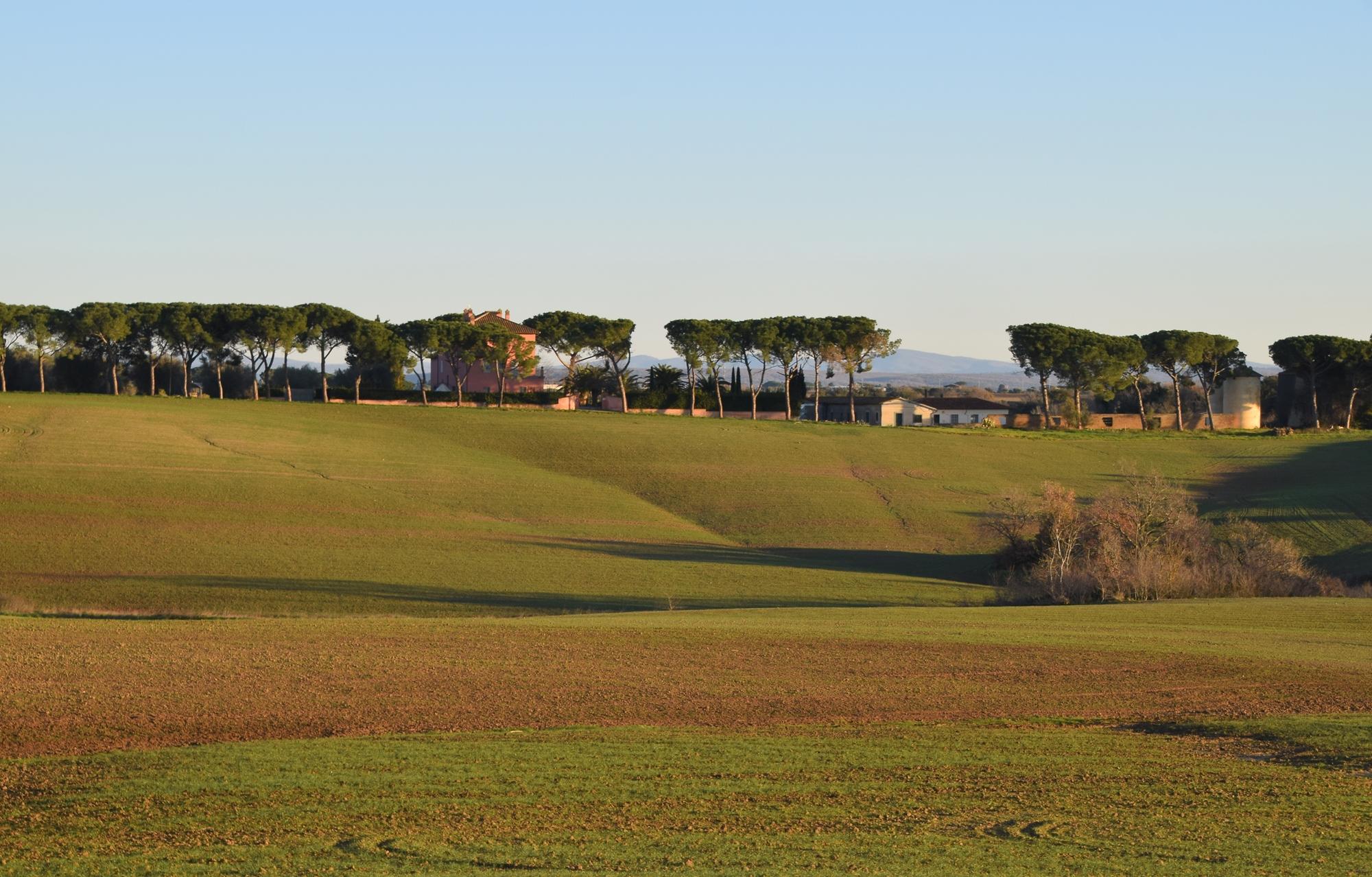 Tuscania-Loc. Pian di Vico, Casale e borgo rurale di Pian di Vico media distanza rid - Copia