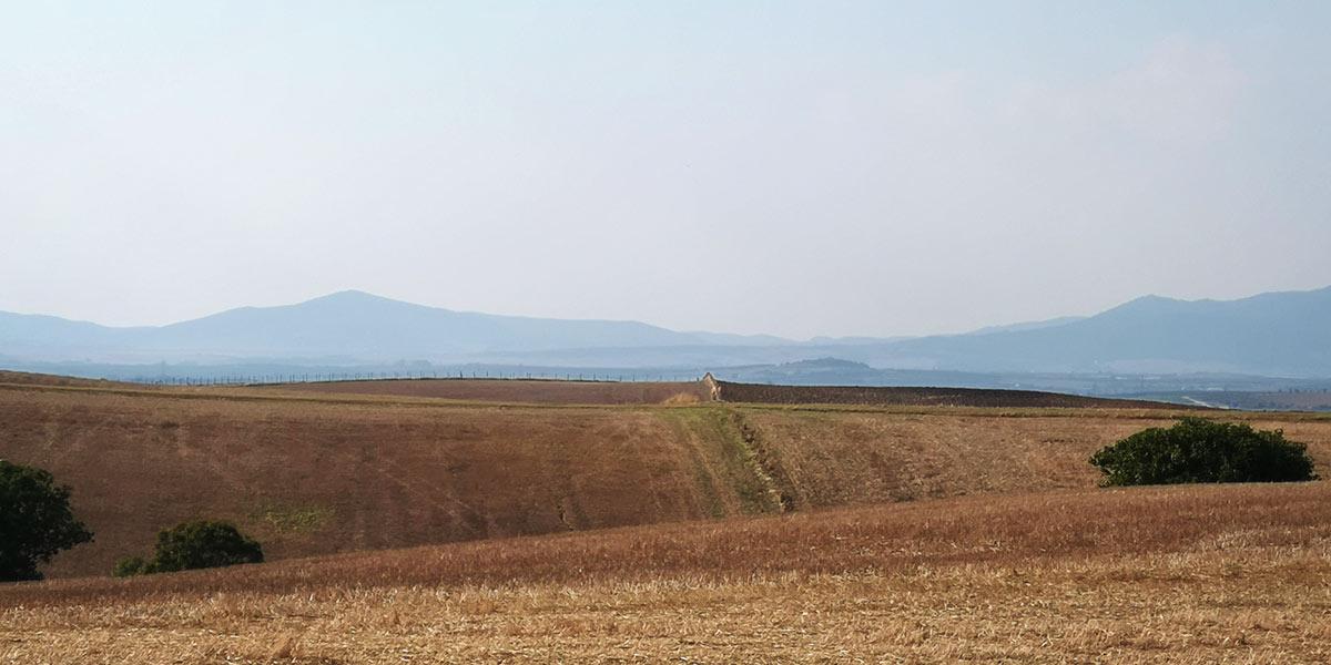 paesaggi-eolici-macroarea-122