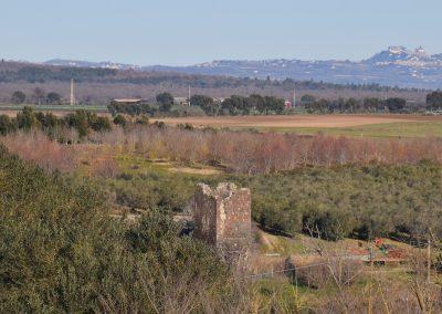 Tuscania-Torre di Arunte-fronte all'impianto di Pian di Vico 2 rid - Copia