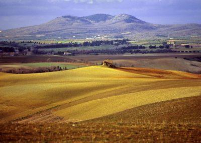 Tuscania-Formicone-1