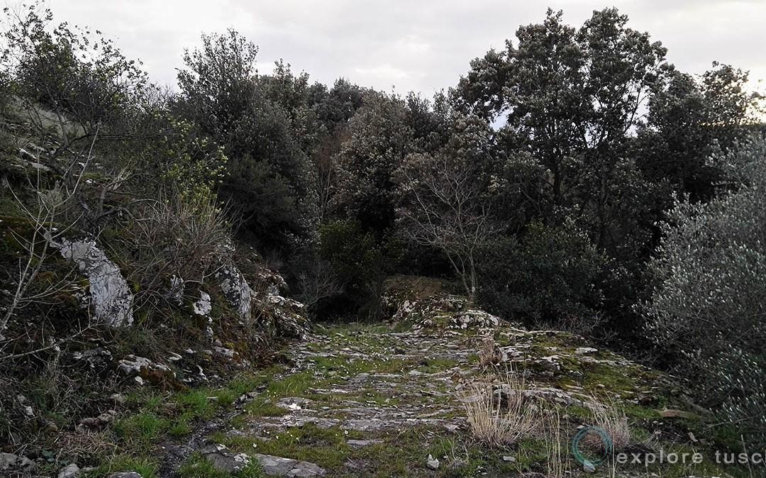 La via Clodia a Tuscania