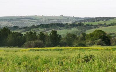 Valle del Mignone – Superstrada in Mezzo 4.0
