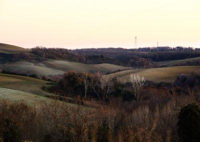 Tuscania-San-Giuliano-formicone-pian-di-vico1082