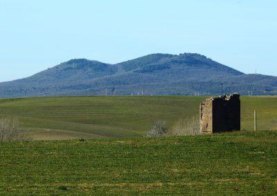 Tuscania-formicone-pian-di-vico-torre-arunte-1056
