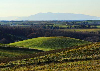 Tuscania-formicone-pian-di-vico1059