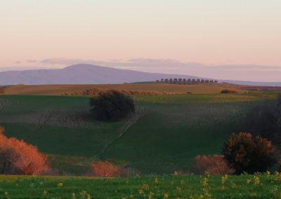 Tuscania-Pian-di-Vico